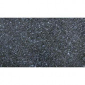 MS International Blue Pearl 18 in. x 31 in. Polished Granite Floor and Wall Tile (7.75 sq. ft. / case)