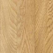 TrafficMASTER Ainsley Oak 7 mm Thick x 7-19/32 in Wide x 50-25/32 in. Length Laminate Flooring (26.80 sq. ft. / case)