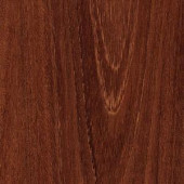 TrafficMASTER Raintree Acacia 12 mm Thick x 4-31/32 in. Wide x 50-25/32 in. Length Laminate Flooring (14 sq. ft. /case)