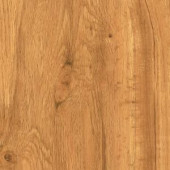 TrafficMASTER Allure Plus Hamilton Oak Resilient Vinyl Flooring - 4 in. x 4 in. Take Home Sample