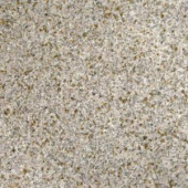 MS International 18 in. x 18 in. Gold Rush Granite Floor and Wall Tile