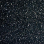 MS International 12 in. x 12 in. Black Galaxy Granite Floor and Wall Tile