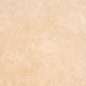 MS International 16 in. x 16 in. Princess Gold Limestone Floor and Wall Tile